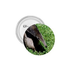 Giant Anteater 1.75  Button