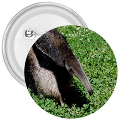 Giant Anteater 3  Button