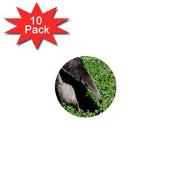 Giant Anteater 1  Mini Button (10 pack)
