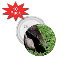 Giant Anteater 1.75  Button (10 pack)