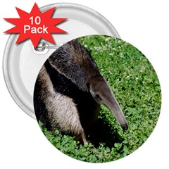 Giant Anteater 3  Button (10 Pack)