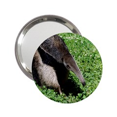 Giant Anteater Handbag Mirror (2.25 )