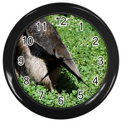 Giant Anteater Wall Clock (black)