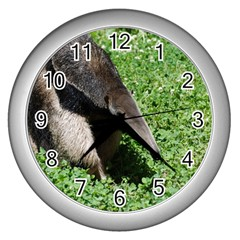 Giant Anteater Wall Clock (silver)