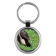 Giant Anteater Key Chain (Round)