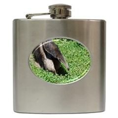 Giant Anteater Hip Flask