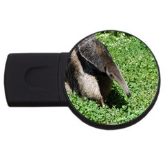 Giant Anteater 2gb Usb Flash Drive (round)