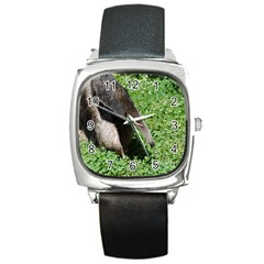 Giant Anteater Square Leather Watch