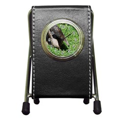 Giant Anteater Stationery Holder Clock