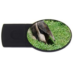 Giant Anteater 4GB USB Flash Drive (Oval)