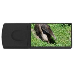 Giant Anteater 4GB USB Flash Drive (Rectangle)