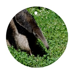 Giant Anteater Round Ornament (Two Sides)