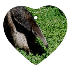 Giant Anteater Heart Ornament (two Sides)