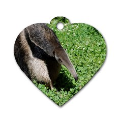 Giant Anteater Dog Tag Heart (two Sided)