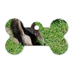 Giant Anteater Dog Tag Bone (Two Sided)