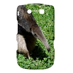 Giant Anteater BlackBerry Torch 9800 9810 Hardshell Case