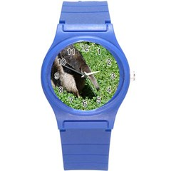Giant Anteater Plastic Sport Watch (Small)