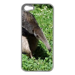 Giant Anteater Apple iPhone 5 Case (Silver)
