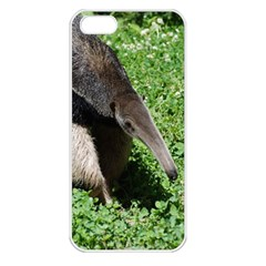Giant Anteater Apple Iphone 5 Seamless Case (white)
