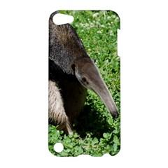 Giant Anteater Apple Ipod Touch 5 Hardshell Case