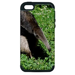 Giant Anteater Apple iPhone 5 Hardshell Case (PC+Silicone)
