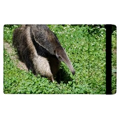Giant Anteater Apple iPad 2 Flip Case