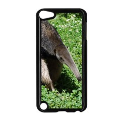 Giant Anteater Apple Ipod Touch 5 Case (black)
