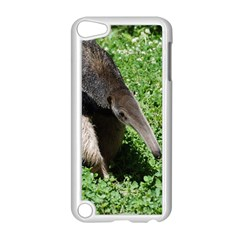 Giant Anteater Apple iPod Touch 5 Case (White)