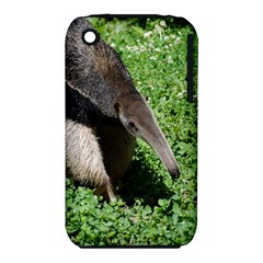 Giant Anteater Apple iPhone 3G/3GS Hardshell Case (PC+Silicone)