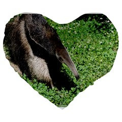 Giant Anteater 19  Premium Heart Shape Cushion