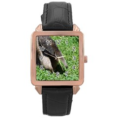 Giant Anteater Rose Gold Leather Watch