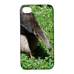 Giant Anteater Apple iPhone 4/4S Hardshell Case with Stand