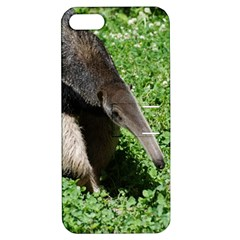 Giant Anteater Apple iPhone 5 Hardshell Case with Stand