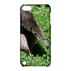 Giant Anteater Apple iPod Touch 5 Hardshell Case with Stand
