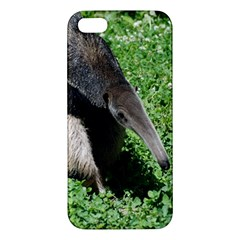 Giant Anteater Apple iPhone 5 Premium Hardshell Case