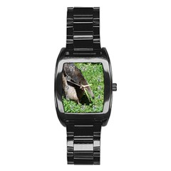Giant Anteater Stainless Steel Barrel Watch
