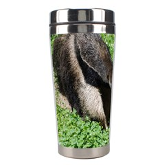 Giant Anteater Stainless Steel Travel Tumbler