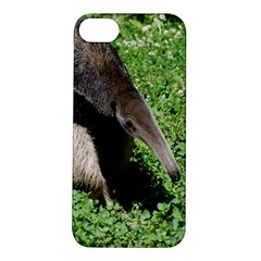 Giant Anteater Apple Iphone 5s Hardshell Case