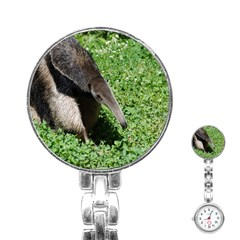 Giant Anteater Stainless Steel Nurses Watch