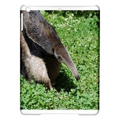 Giant Anteater Apple Ipad Air Hardshell Case