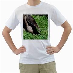 Giant Anteater Men s T-Shirt (White)