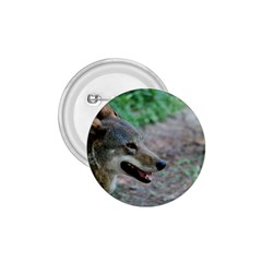 Red Wolf 1.75  Button