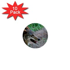 Red Wolf 1  Mini Button (10 Pack)