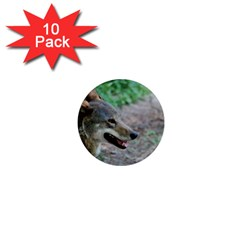 Red Wolf 1  Mini Button Magnet (10 pack)
