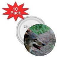 Red Wolf 1.75  Button (10 pack)