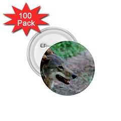 Red Wolf 1.75  Button (100 pack)