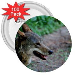 Red Wolf 3  Button (100 pack)