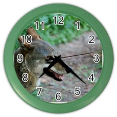 Red Wolf Wall Clock (Color)