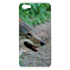 Red Wolf Apple iPhone 5 Hardshell Case