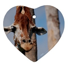 Cute Giraffe Heart Ornament